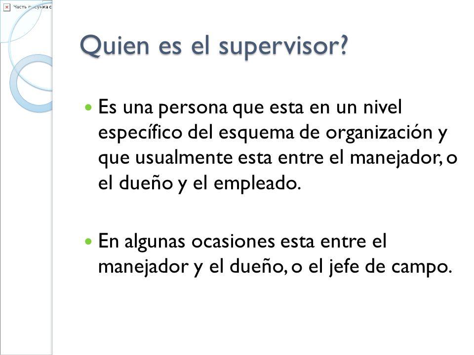 Quien es el supervisor