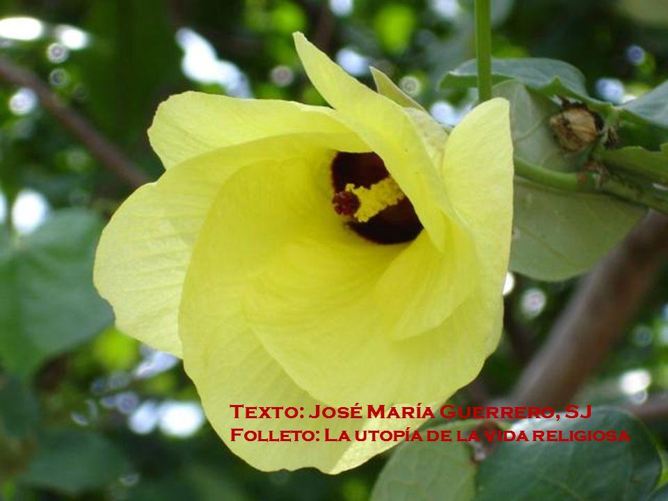 Texto: José María Guerrero, SJ