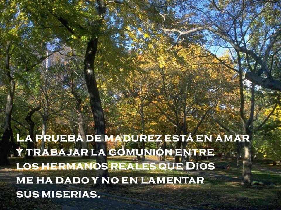 La prueba de madurez está en amar y trabajar la comunión entre los hermanos reales que Dios me ha dado y no en lamentar sus miserias.