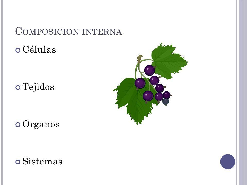 Composicion interna Células Tejidos Organos Sistemas