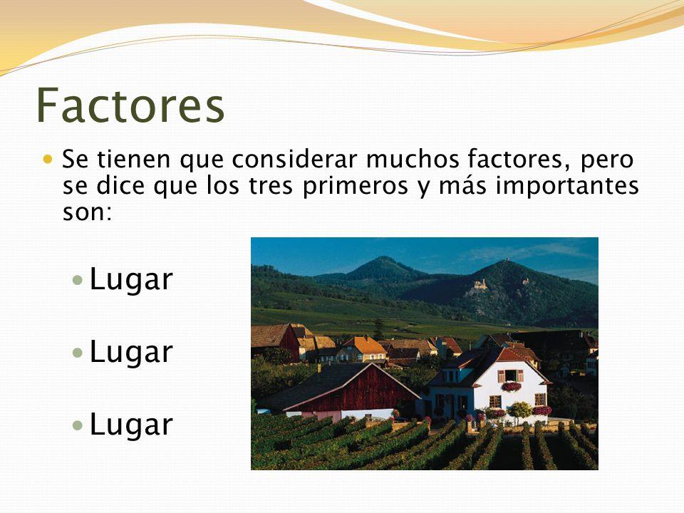 Factores Se tienen que considerar muchos factores, pero se dice que los tres primeros y más importantes son: