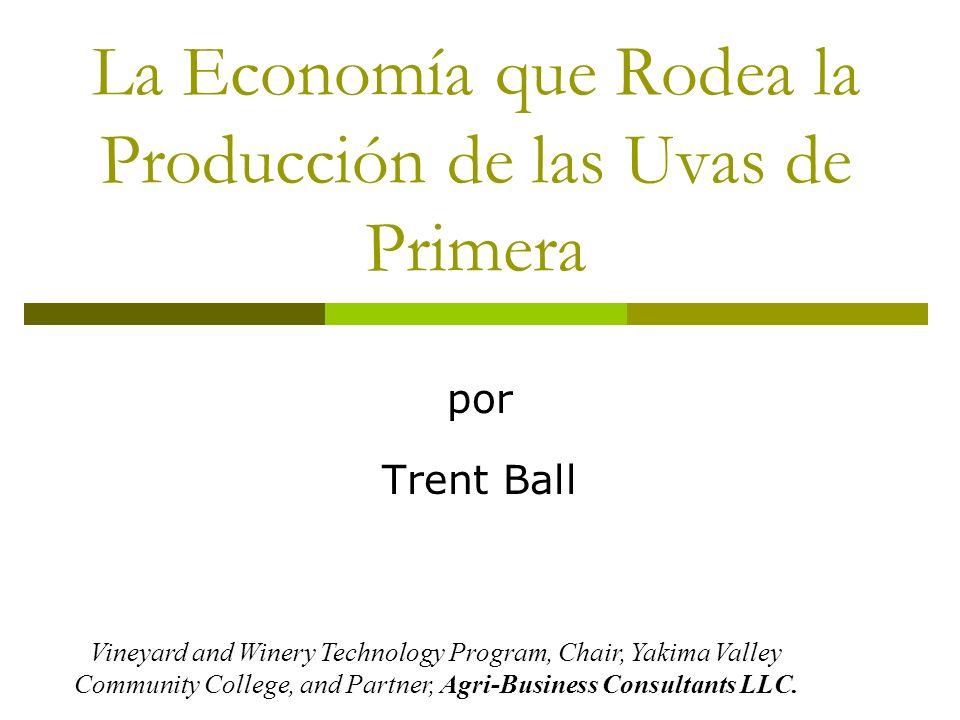 La Economía que Rodea la Producción de las Uvas de Primera