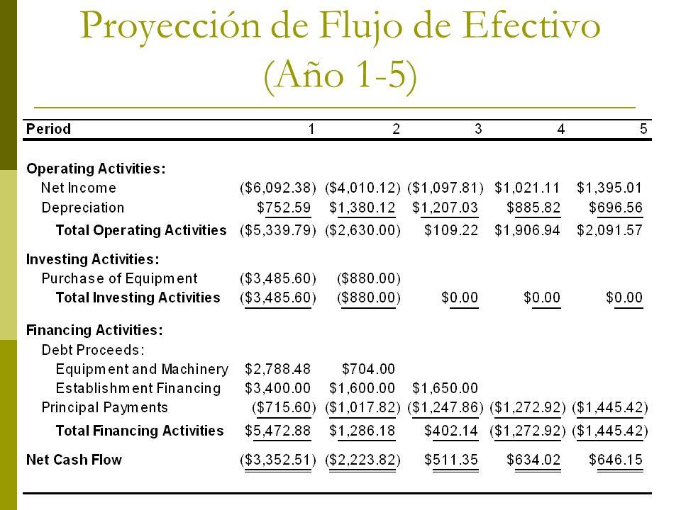Proyección de Flujo de Efectivo (Año 1-5)
