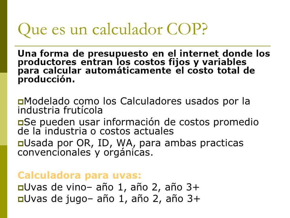 Que es un calculador COP