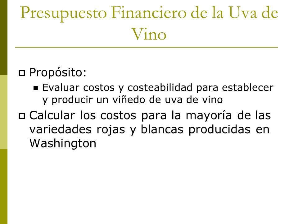 Presupuesto Financiero de la Uva de Vino