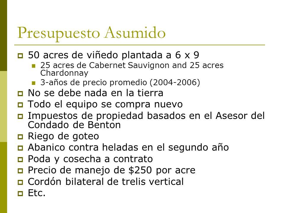 Presupuesto Asumido 50 acres de viñedo plantada a 6 x 9