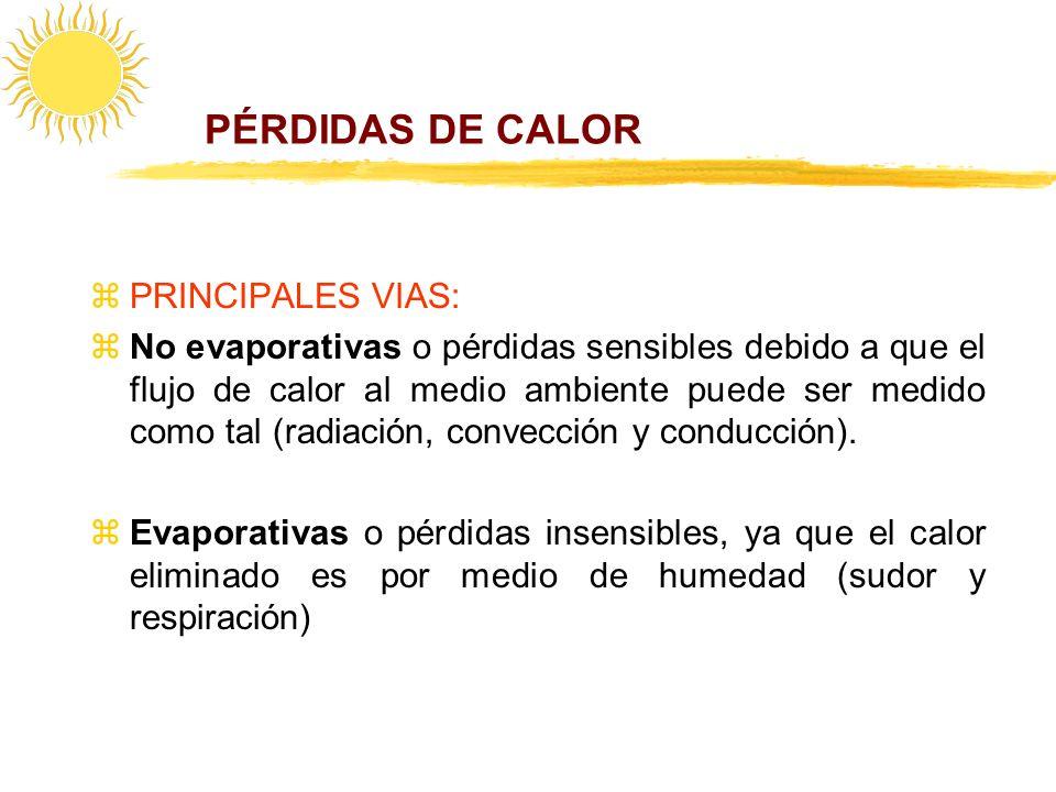 PÉRDIDAS DE CALOR PRINCIPALES VIAS: