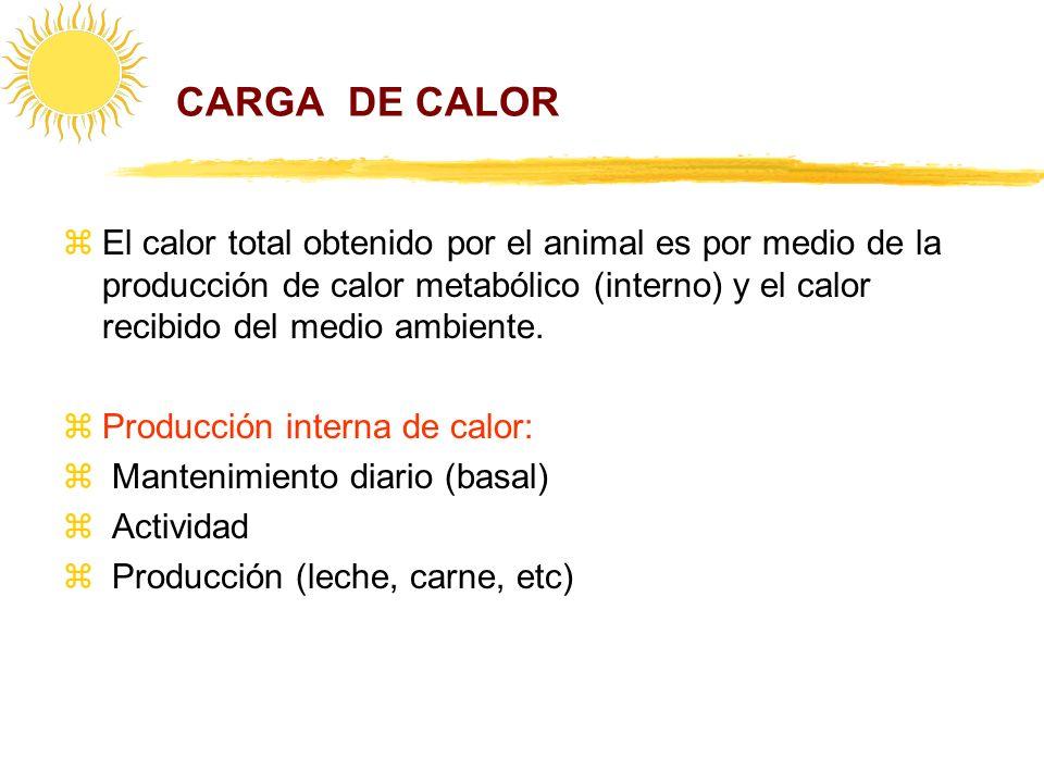 CARGA DE CALOR