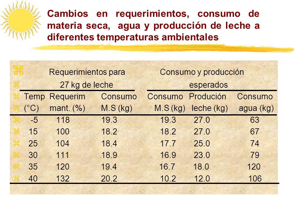 Requerimientos para Consumo y producción