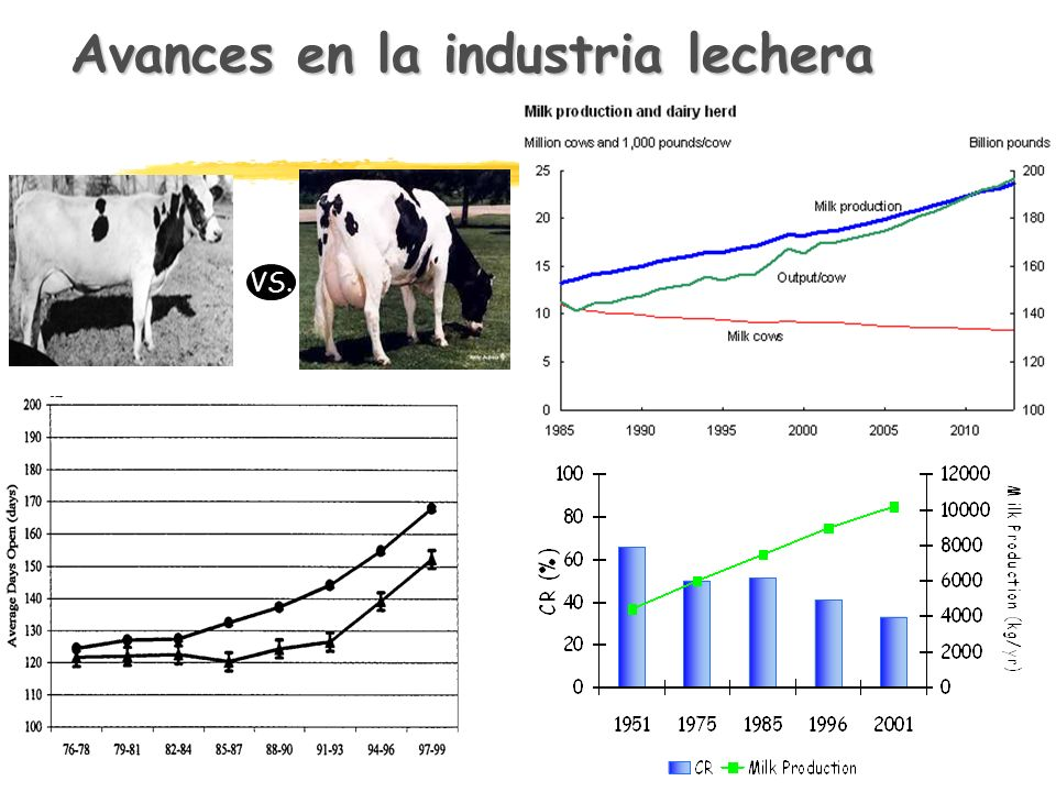Avances en la industria lechera