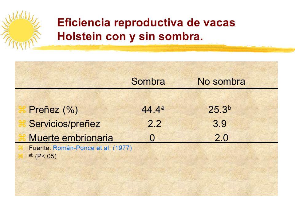 Eficiencia reproductiva de vacas Holstein con y sin sombra.