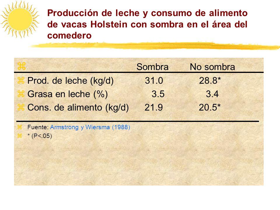 Producción de leche y consumo de alimento de vacas Holstein con sombra en el área del comedero