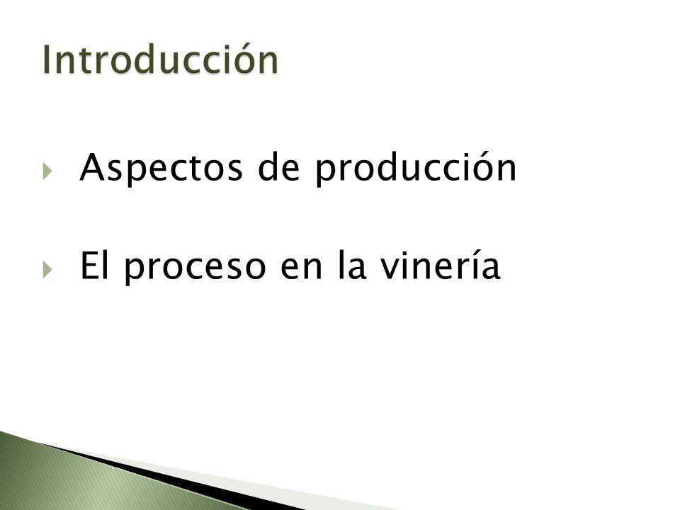 Introducción Aspectos de producción El proceso en la vinería