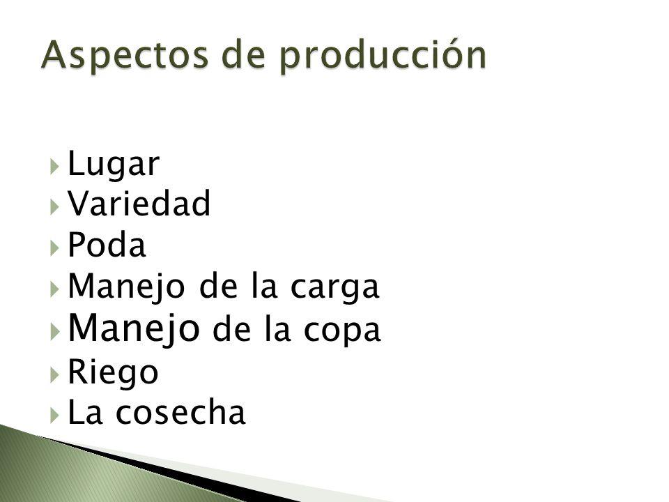 Aspectos de producción