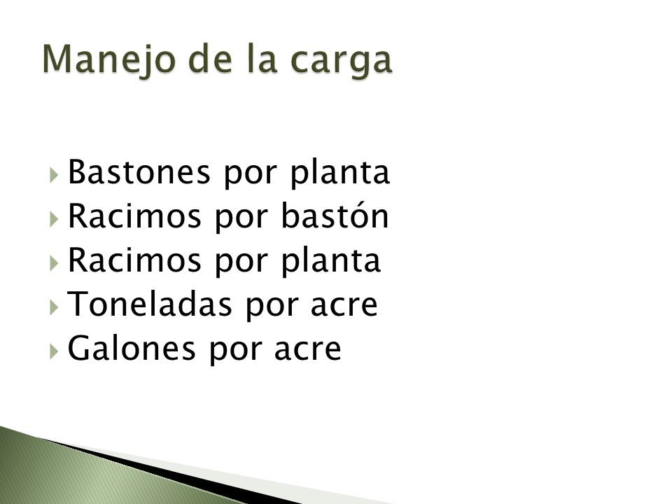 Manejo de la carga Bastones por planta Racimos por bastón