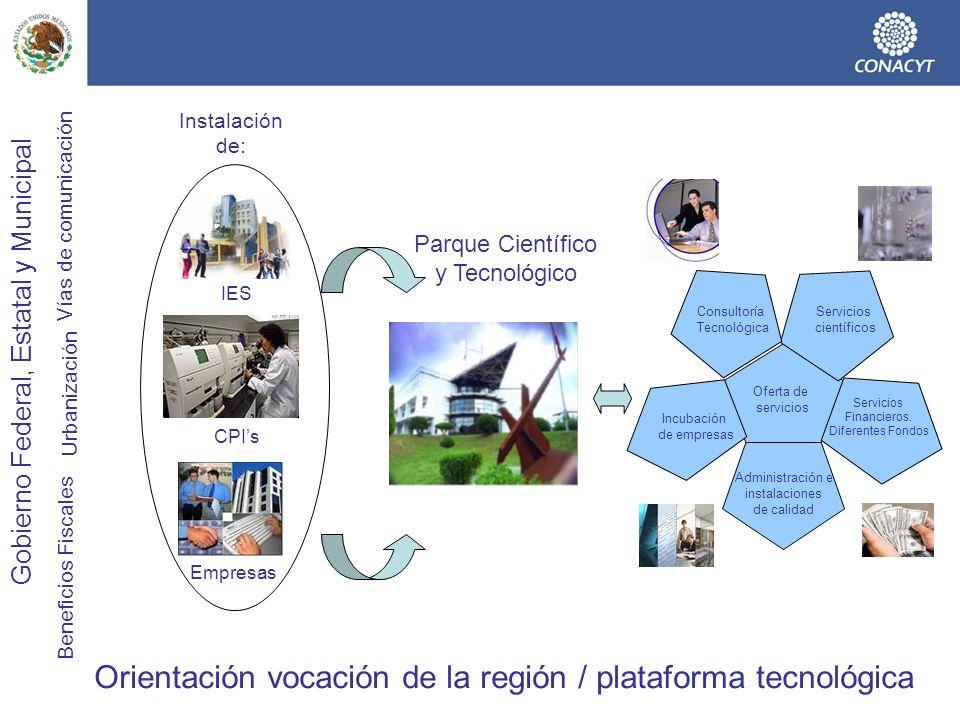 Orientación vocación de la región / plataforma tecnológica