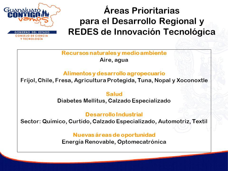 Áreas Prioritarias para el Desarrollo Regional y REDES de Innovación Tecnológica