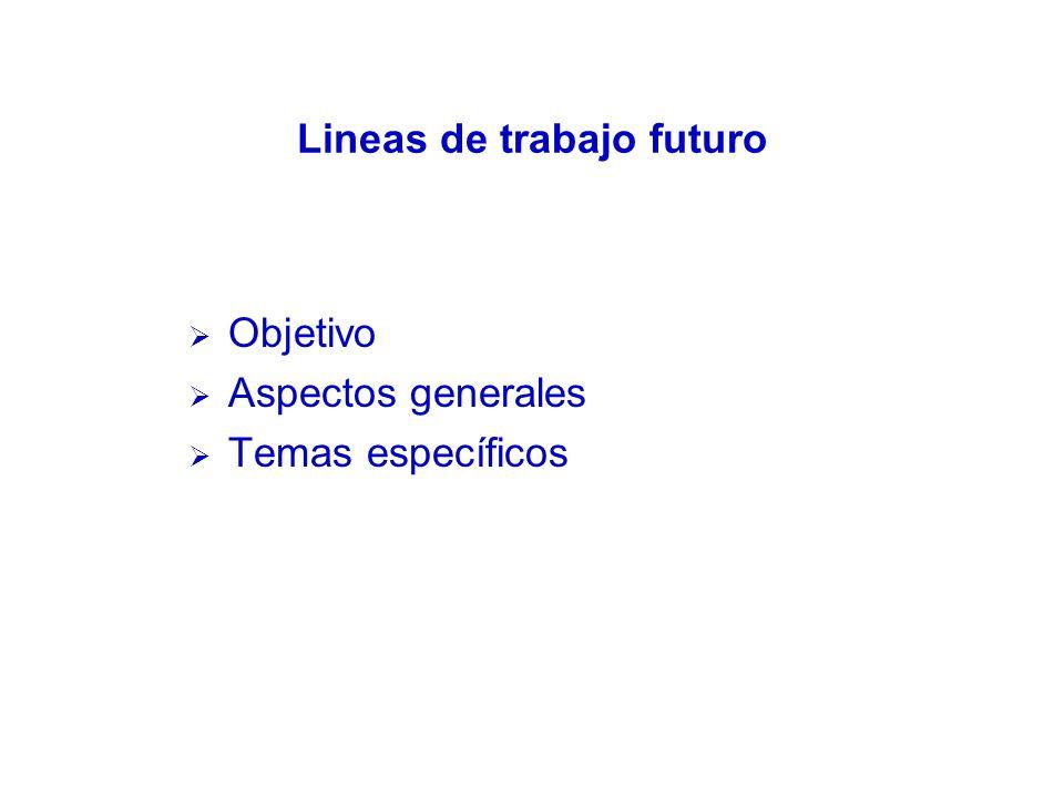 Lineas de trabajo futuro