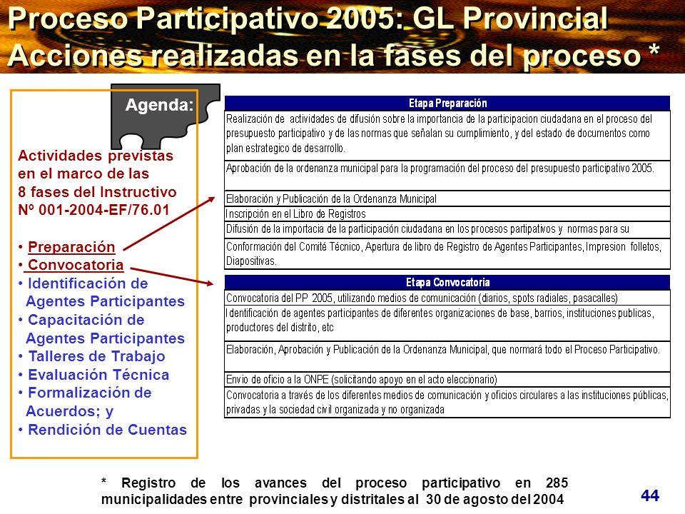 Proceso Participativo 2005: GL Provincial Acciones realizadas en la fases del proceso *