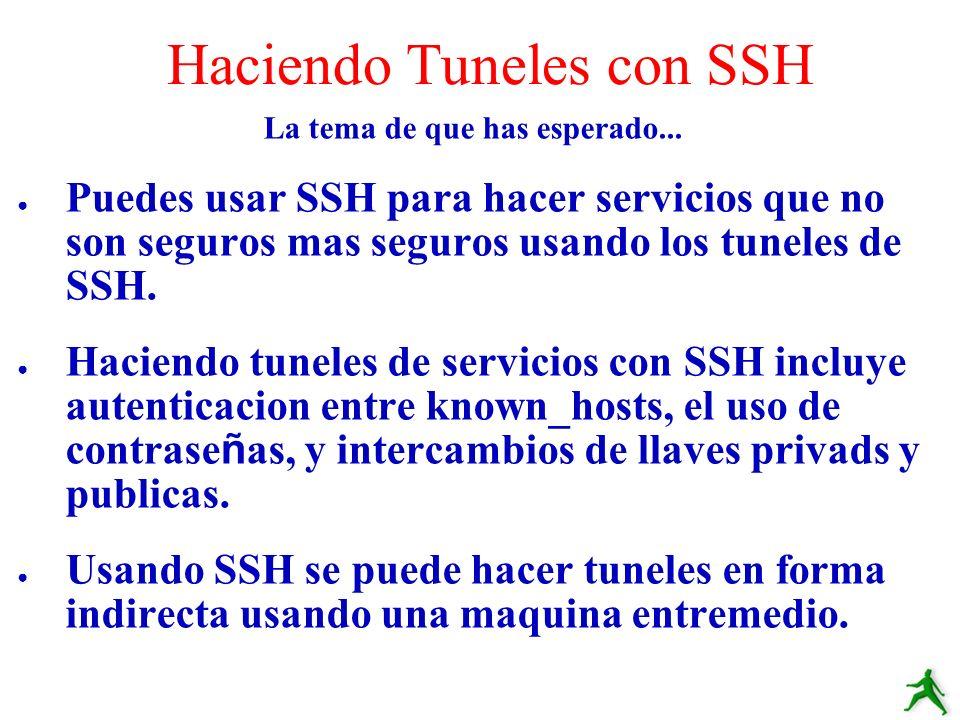 Haciendo Tuneles con SSH