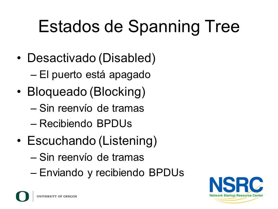 Estados de Spanning Tree