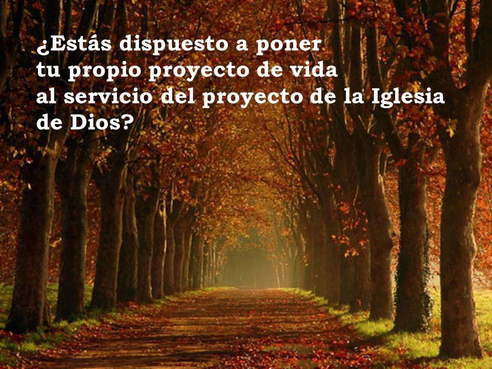 ¿Estás dispuesto a poner tu propio proyecto de vida al servicio del proyecto de la Iglesia de Dios