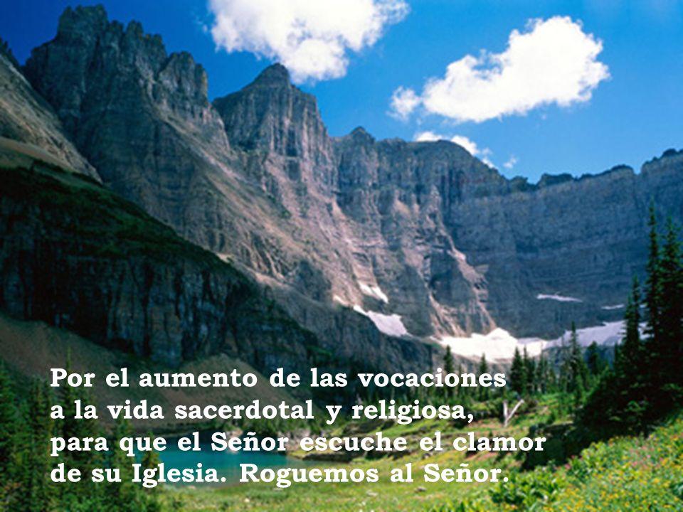 Por el aumento de las vocaciones a la vida sacerdotal y religiosa, para que el Señor escuche el clamor de su Iglesia.