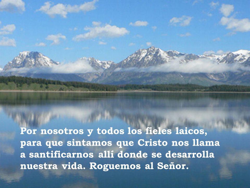 Por nosotros y todos los fieles laicos, para que sintamos que Cristo nos llama a santificarnos allí donde se desarrolla nuestra vida.