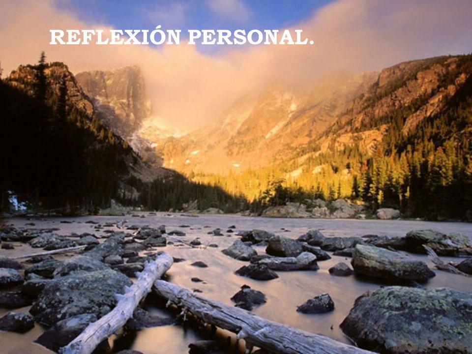REFLEXIÓN PERSONAL.