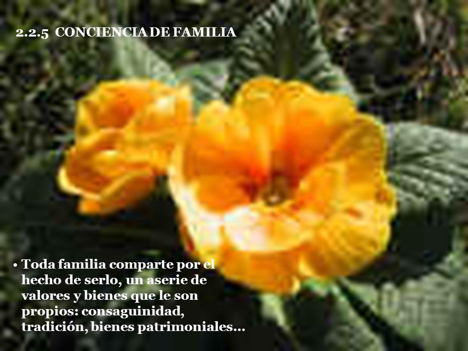 2.2.5 CONCIENCIA DE FAMILIA