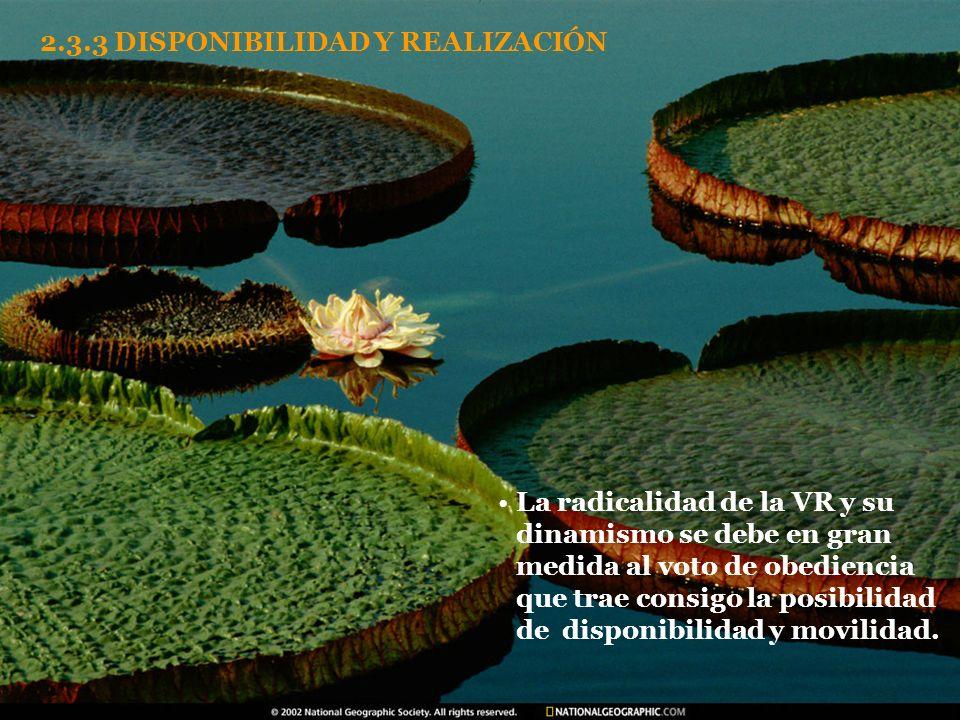 2.3.3 DISPONIBILIDAD Y REALIZACIÓN
