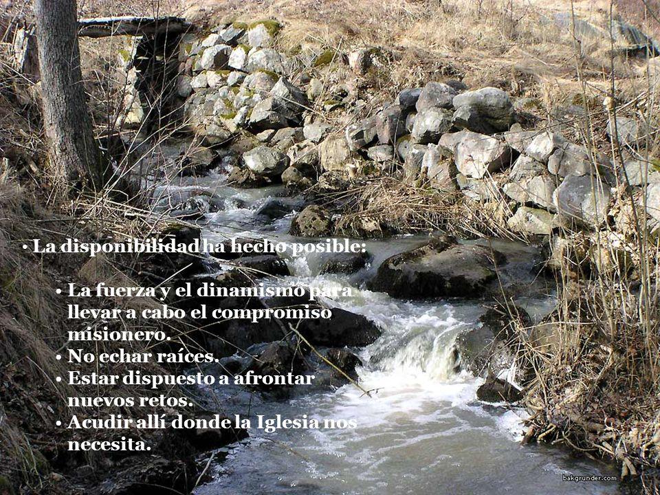 La fuerza y el dinamismo para llevar a cabo el compromiso misionero.