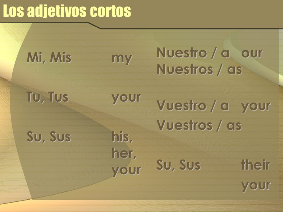 Los adjetivos cortos Nuestro / a our Mi, Mis my Nuestros / as