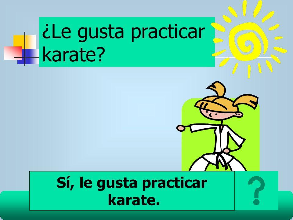 ¿Le gusta practicar karate