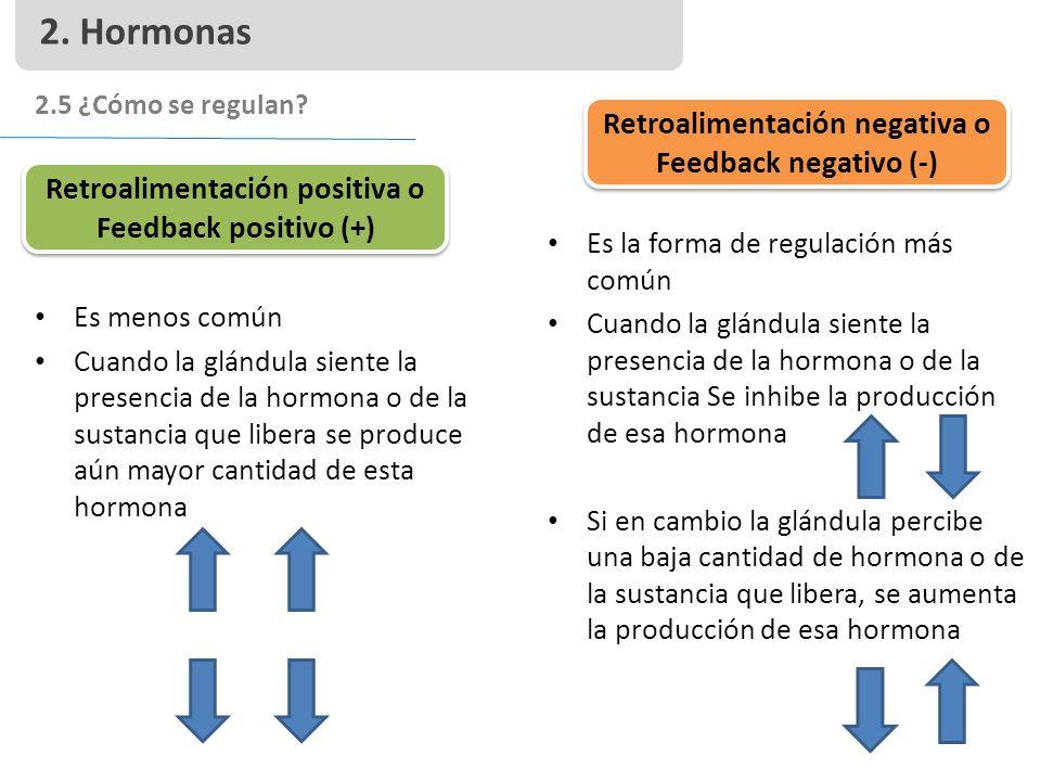 2. Hormonas Retroalimentación negativa o Feedback negativo (-)