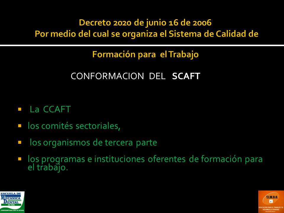 CONFORMACION DEL SCAFT
