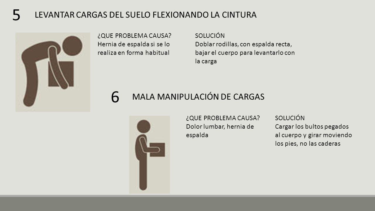 5 6 LEVANTAR CARGAS DEL SUELO FLEXIONANDO LA CINTURA