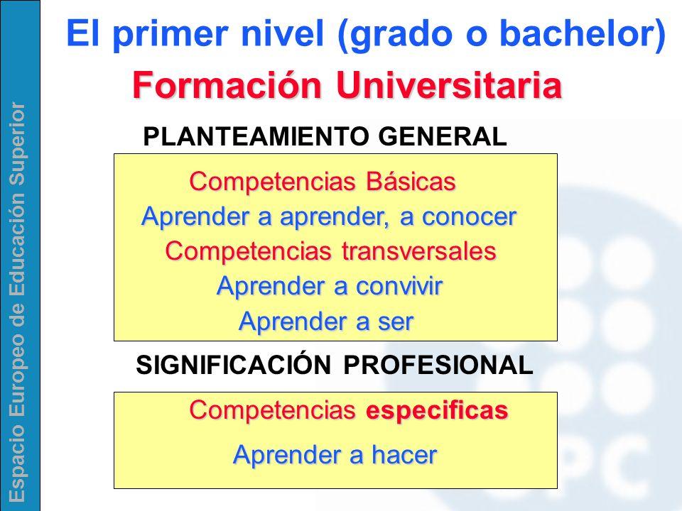 El primer nivel (grado o bachelor) Formación Universitaria