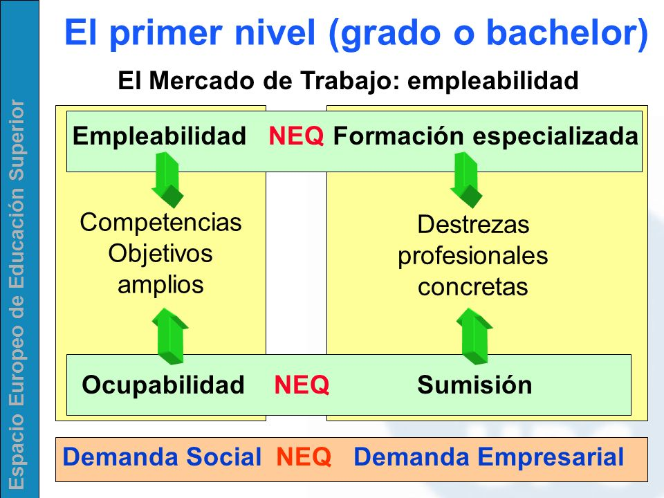 El primer nivel (grado o bachelor)