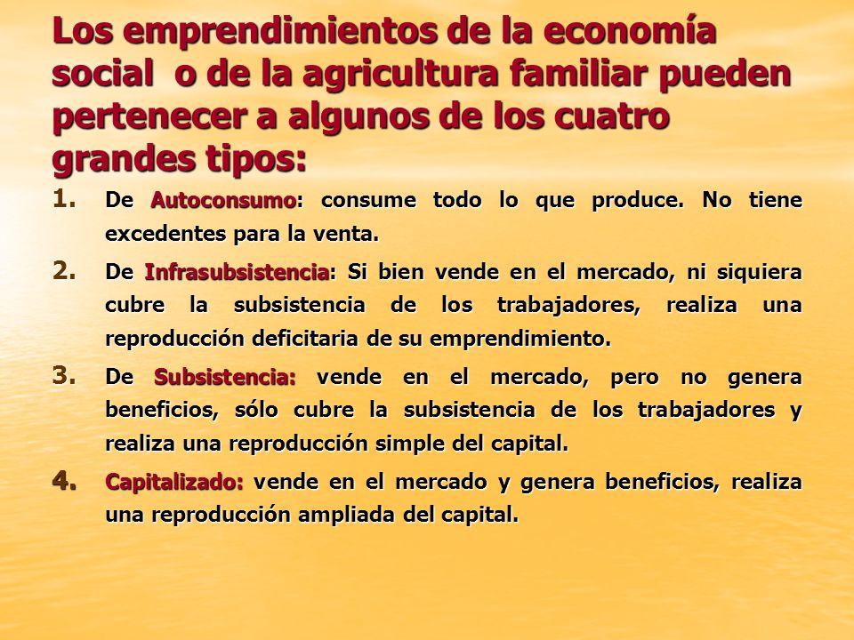 Los emprendimientos de la economía social o de la agricultura familiar pueden pertenecer a algunos de los cuatro grandes tipos: