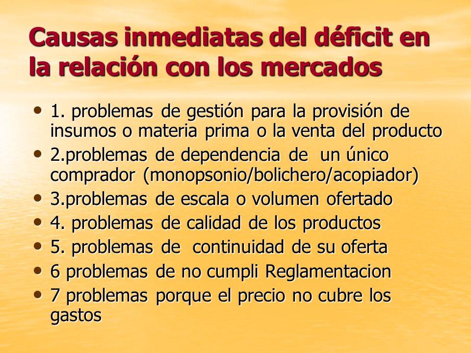 Causas inmediatas del déficit en la relación con los mercados