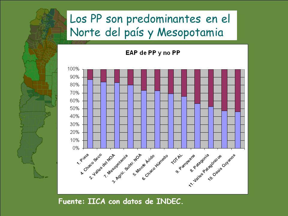 Los PP son predominantes en el Norte del país y Mesopotamia