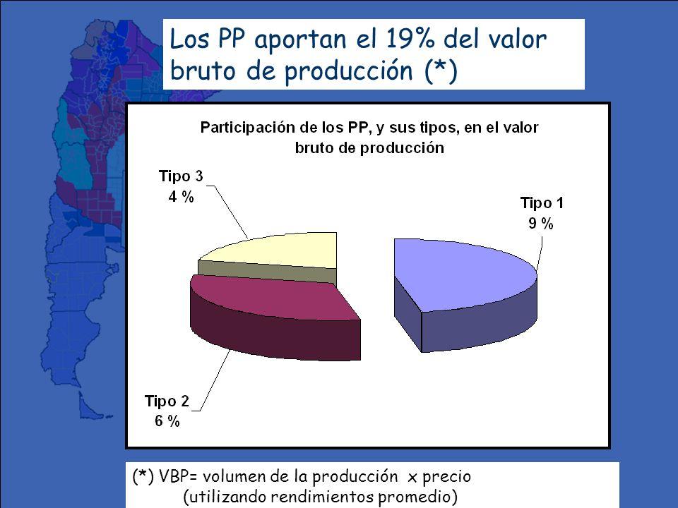 Los PP aportan el 19% del valor bruto de producción (*)