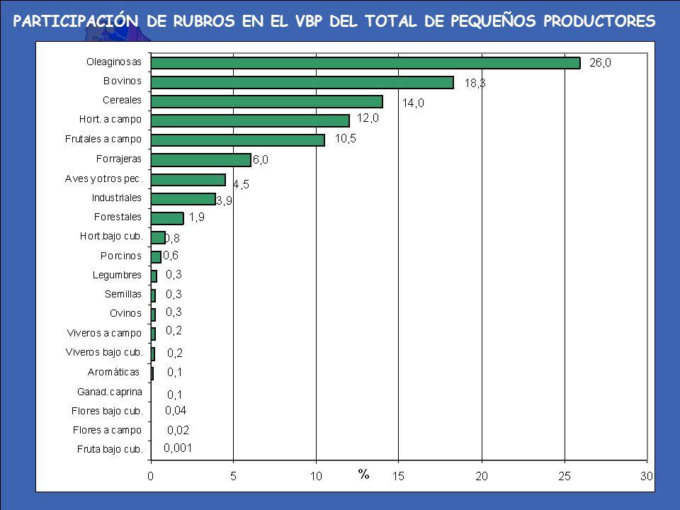 PARTICIPACIÓN DE RUBROS EN EL VBP DEL TOTAL DE PEQUEÑOS PRODUCTORES