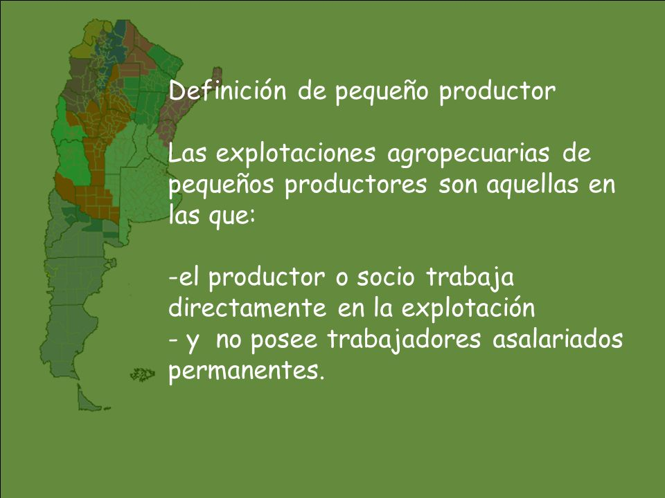 Definición de pequeño productor