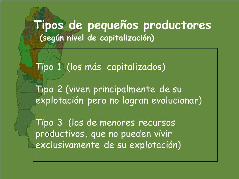 Tipos de pequeños productores