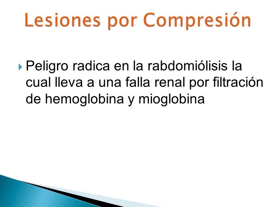 Peligro radica en la rabdomiólisis la cual lleva a una falla renal por filtración de hemoglobina y mioglobina