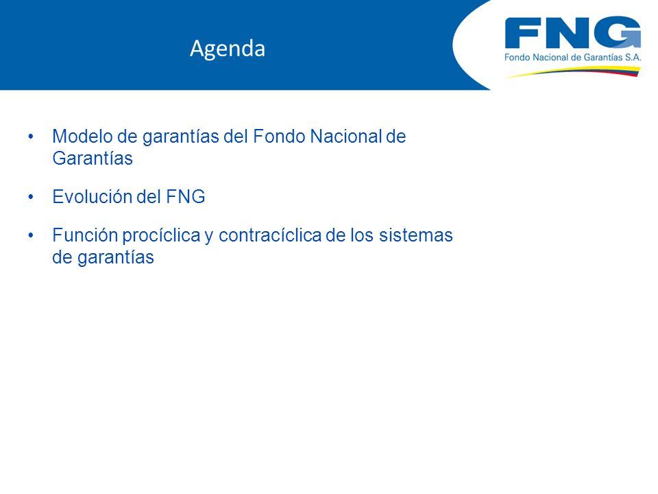 Agenda Modelo de garantías del Fondo Nacional de Garantías