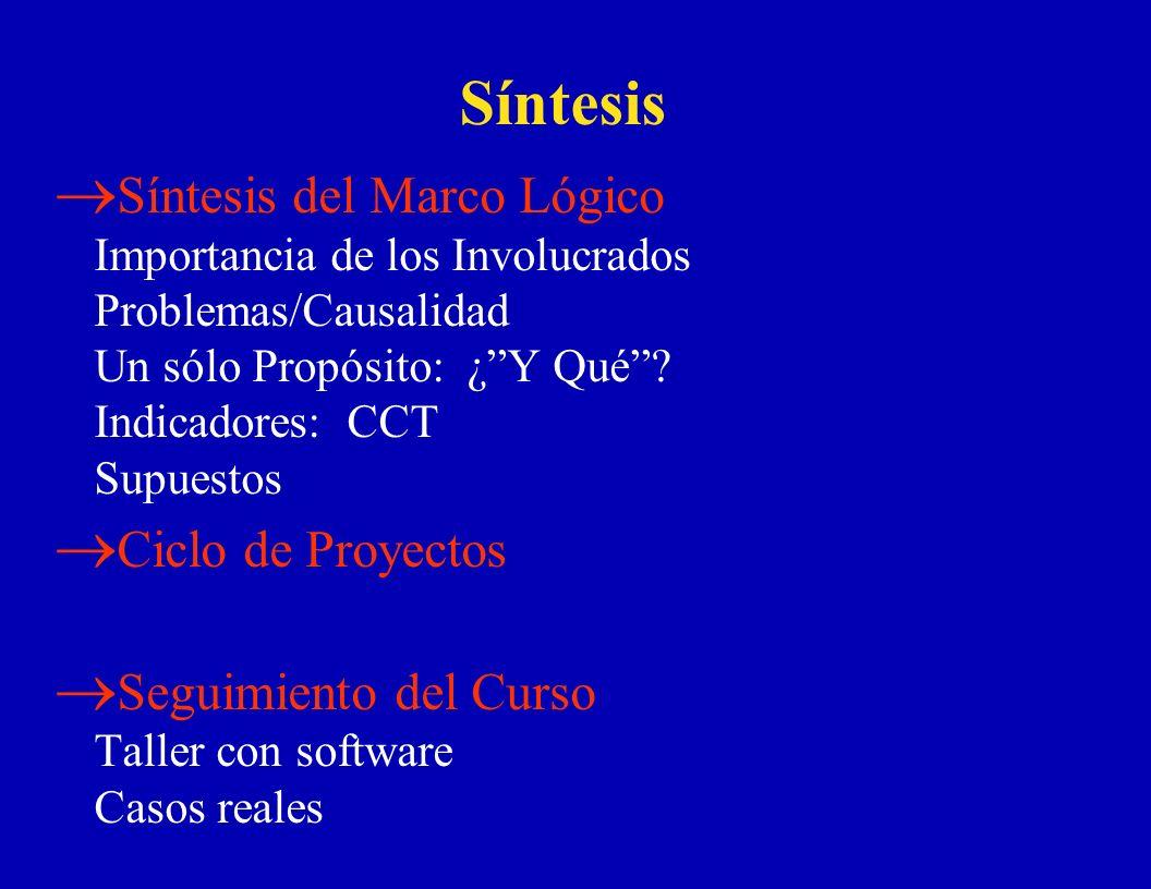 Síntesis Síntesis del Marco Lógico Importancia de los Involucrados Problemas/Causalidad Un sólo Propósito: ¿ Y Qué Indicadores: CCT Supuestos.