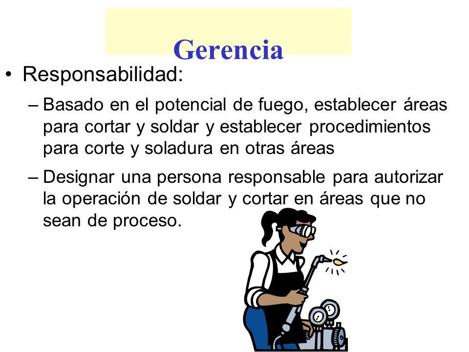 Gerencia Responsabilidad: